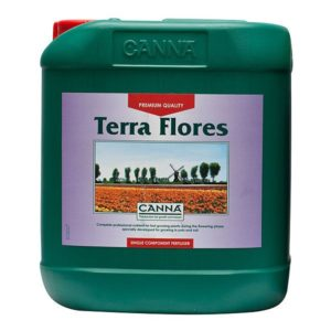 canna-terra-flores-5L~img_principale_9458