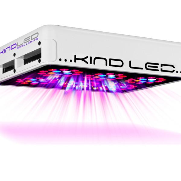 kind_l300_on