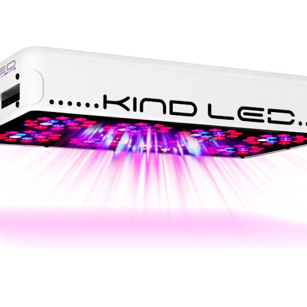 kind_l450_on-1