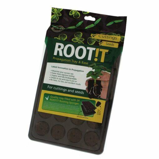 Root!t 24